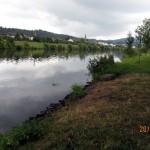 losheim2011_09